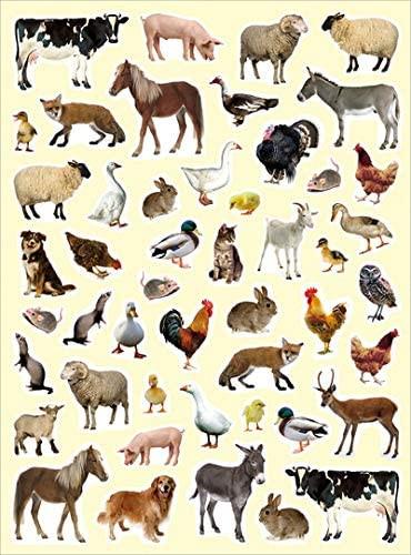PEGATINAS FOTOS ANIMALES DE CAMPO