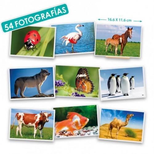 FOTOGRAFÍAS ANIMALES